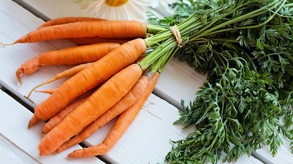 Carrots (ultimate healthy food & helps to make your skin glow)