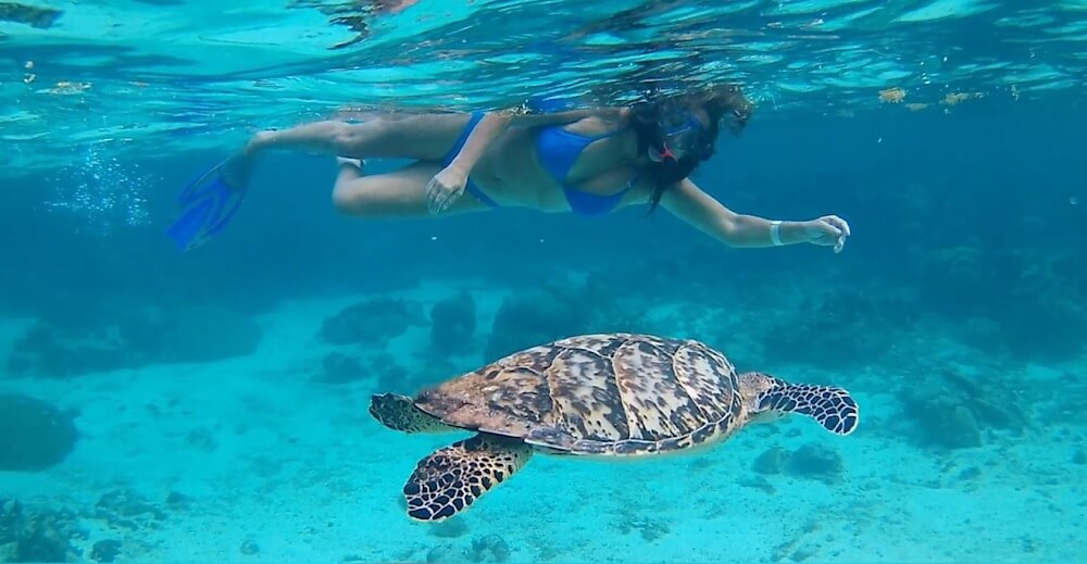 Ambergris Caye and Hol Chan Marine Reserve to visit in belize