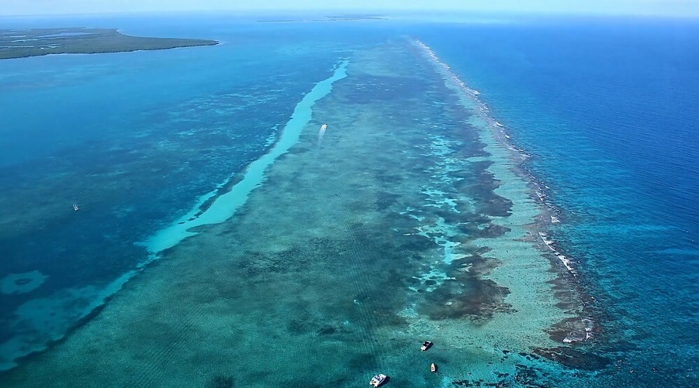 Glover's reef